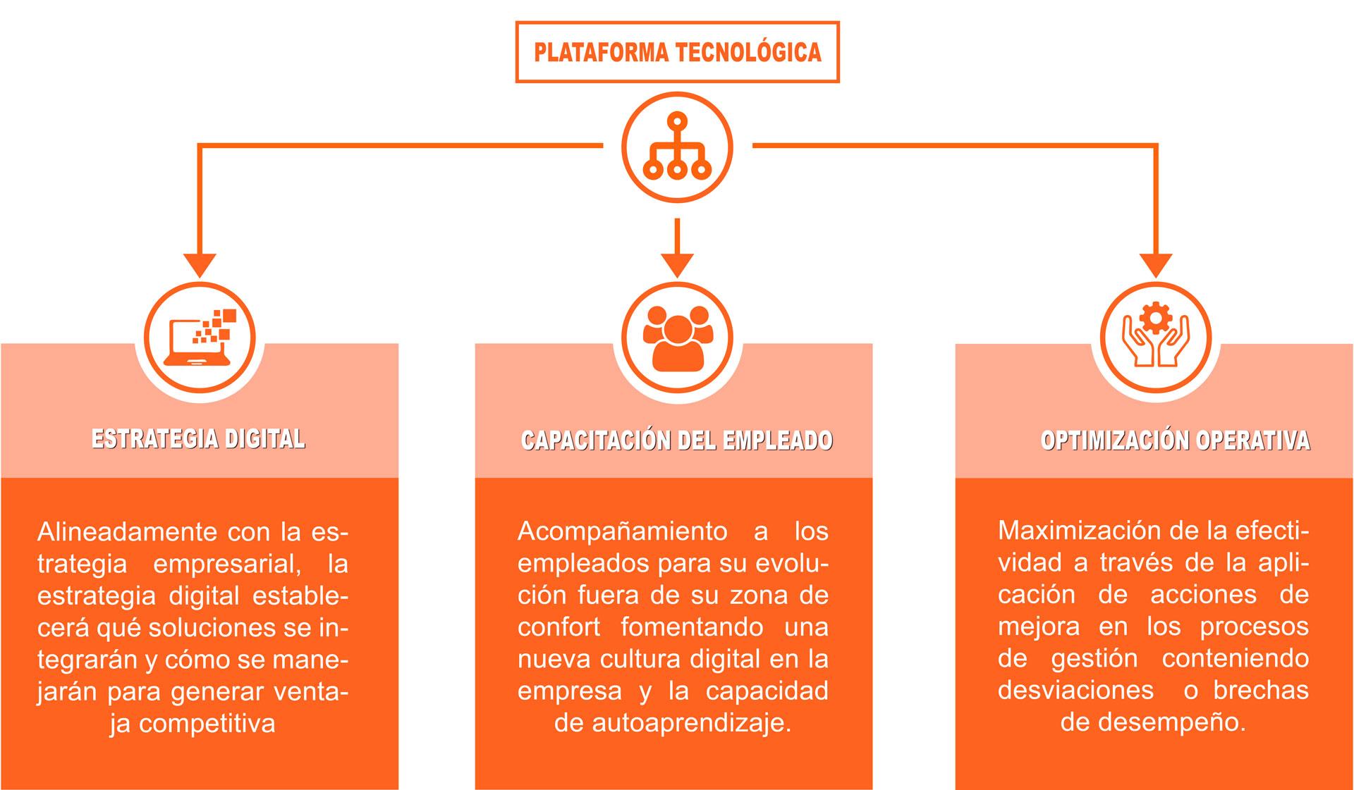 infogracia plataforma digital